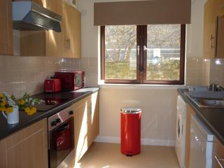 Multiple holiday apartments Old town Edinburgh  Please send me enquiry messages - Edinburgh vacation rentals
