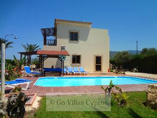 Comfortable villa, 3BR, established garden, pool - Argaka vacation rentals