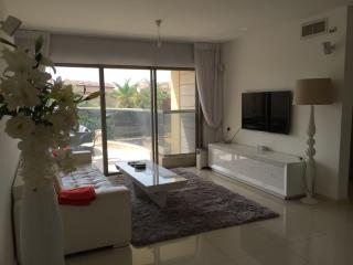 Nice Condo with Dishwasher and Long Term Rentals Allowed (over 1 Month) - Rishon Lezion vacation rentals