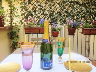 LOVELY TERRACE, ACROSS THE STREET FROM ACCADEMIA! - Florence vacation rentals