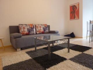 2-Zimmer-Wohnung, zentral und ruhig gelegen - Nuremberg vacation rentals