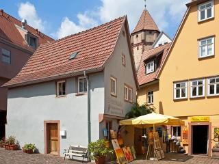 Bright 1 bedroom House in Wertheim with Washing Machine - Wertheim vacation rentals
