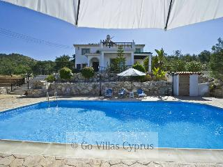 3BR villa, hillside location, private pool, wifi - Argaka vacation rentals