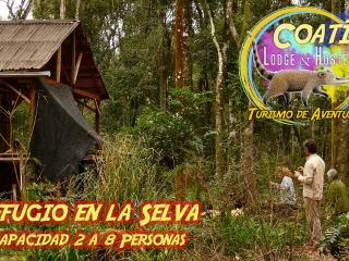 Cabaña Lodge El Paraiso. ubicado en la selva unico - El Soberbio vacation rentals