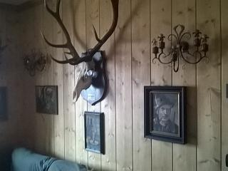 The hunter's house in the mountains - San Vito Di Cadore vacation rentals