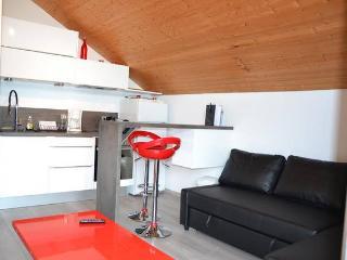 Appartement 4 pers. + jardin, calme vue montagnes - Saint-Jorioz vacation rentals