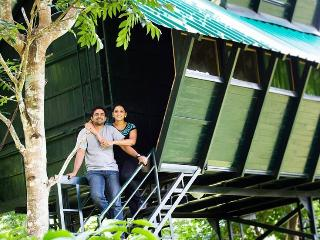 Tree house wayanad, wildlife resort, tree cottage - Sultan Battery vacation rentals