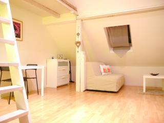 le lierre: joli meublé avec mezzanine au calme - Bischheim vacation rentals