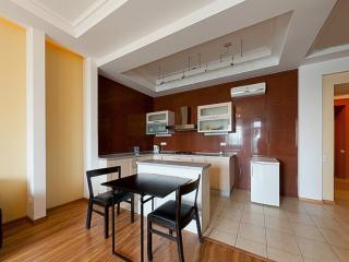 Stylish apartment on Kirochnaya, 22-1 - Saint Petersburg vacation rentals