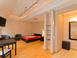 Stylish studio on Kirochnaya, 20 - Saint Petersburg vacation rentals