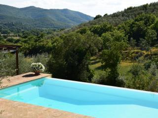 Tuscany cottage near Castiglion Fiorentino, with Private Pool, BBQ, & Parking - Pieve di Chio vacation rentals