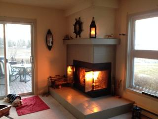 Lighthouse Point Collingwood Ontario - Collingwood vacation rentals