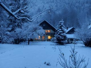 Cozy and Charming Alpine House - Kranjska Gora vacation rentals