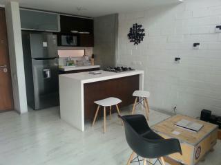 Lovely duplex located 4 blocks from Lleras Park - Medellin vacation rentals
