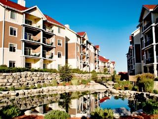 Beautiful Condo with Internet Access and A/C - Branson West vacation rentals