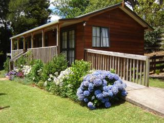 Karangahake Gold 'n Views Cottage - Coromandel vacation rentals