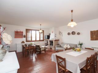 LA MASSERIA CHARMING APPARTMENT WITH GREAT VIEW - Montespertoli vacation rentals