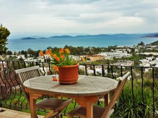 Cozy 2 bedroom Villa in Torba - Torba vacation rentals