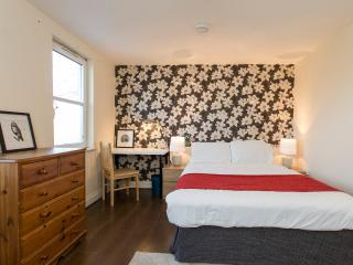 Modern Spacious flat 15 minutes from Centre - London vacation rentals