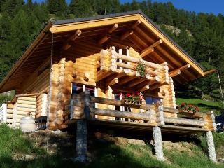 Chalet en  rondins en pleine nature à louer 95 m2 - Bourg Saint Pierre vacation rentals
