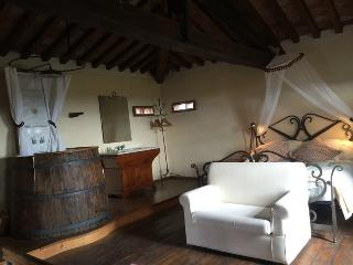 Honeymoon Suite in the Tower with Breakfast - Rigutino vacation rentals