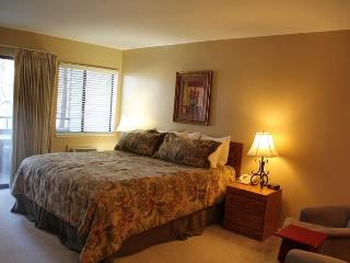 5 Star Studio, Close To Everything - South Lake Tahoe vacation rentals