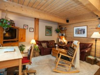 ON THE RIVER for couple or solo! Ski Vail Condo~ All you need for epic trip~ FREE Vail Bus out front - Vail vacation rentals