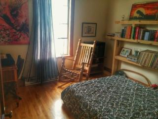 Very spacious place - Montreal vacation rentals