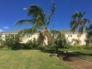 3 bedroom Condo with Internet Access in Basseterre - Basseterre vacation rentals