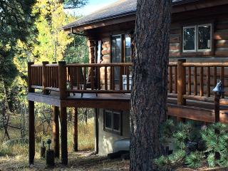 Easterday's Lazy Rx Cabin - Allenspark vacation rentals