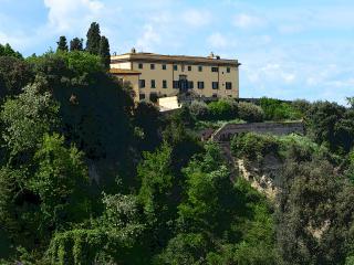 Villa Strozzi-Collegalli - Montaione vacation rentals