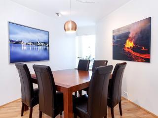 Nice apartment downtown Reykjavik - Reykjavik vacation rentals