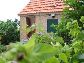 House Jasminka - Marina vacation rentals