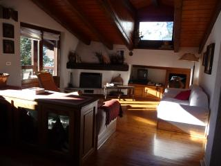 Courmayeur grande mansarda panoramica. WIFI free - Courmayeur vacation rentals