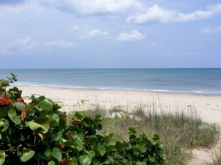 Remodeled Beach House, Steps from the Beach, Perfect for Families, Snowbirds! - Indialantic vacation rentals