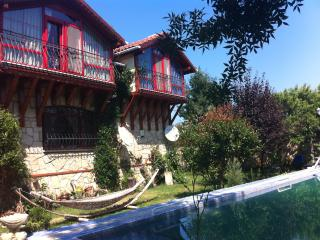 3 bedroom Villa with Dishwasher in Yesilcay - Yesilcay vacation rentals