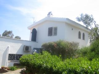 Nice House with A/C and Parking - Olbia vacation rentals