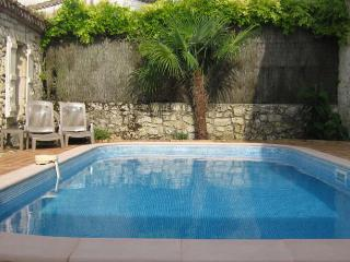 2 Stone houses in village heated pool gardens terrace - Larressingle vacation rentals