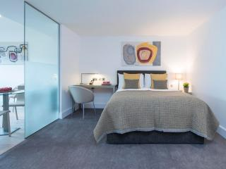 Comfortable Studio Apartment in the Heart of Shoreditch - London vacation rentals