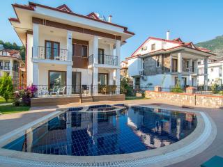 Opal Villa 3 - Ovacik vacation rentals