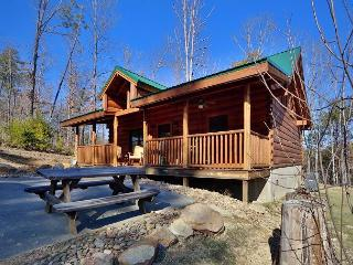 Skinny Dippin is a cozy 1 bedroom cabin with a swim spa right in cabin. - Sevierville vacation rentals