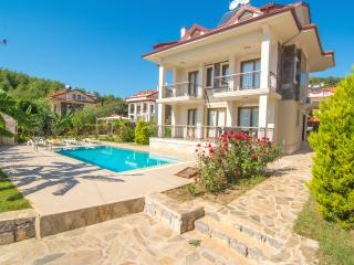Opal Villa 1 - Oludeniz vacation rentals
