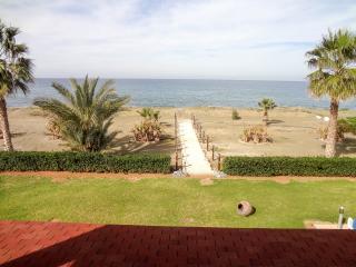 Beachfront 4BR Villa, private pool, mature garden - Argaka vacation rentals