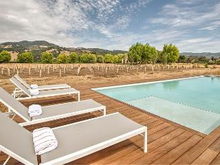 4BR Vineyard House with Pool + Guest House in Kenwood - Kenwood vacation rentals