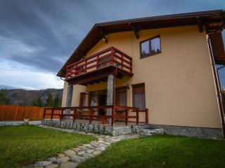 Casa MOSKON - Off Road and Mountain Adventure - Sacele vacation rentals