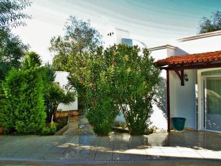 Beautiful 4 bedroom Bodrum Villa with Dishwasher - Bodrum vacation rentals