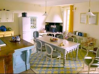 Le logis du Maître (The owners apartment) - Cordes-sur-Ciel vacation rentals