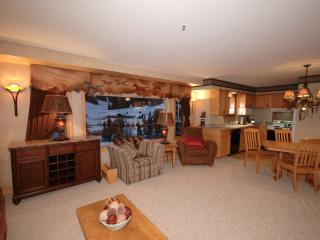 Affordable, Ski-In/Out, Luxury, Newly Decorated - Gallatin Gateway vacation rentals