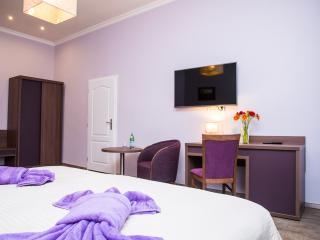 Superior apartment - Prague vacation rentals