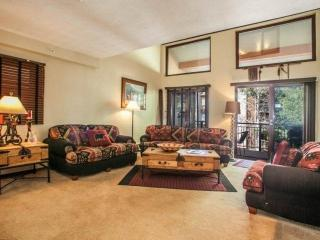 2 Level Condo, 2 Outdoor Hot Tubs, Heated Pool, On Free Vail Bus Route - Vail vacation rentals